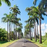 route guadeloupe